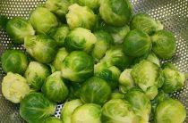 Брюссельская капуста: секреты заморозки полезного овоща!