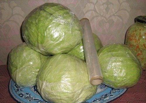 хранение капусты в домашних условиях