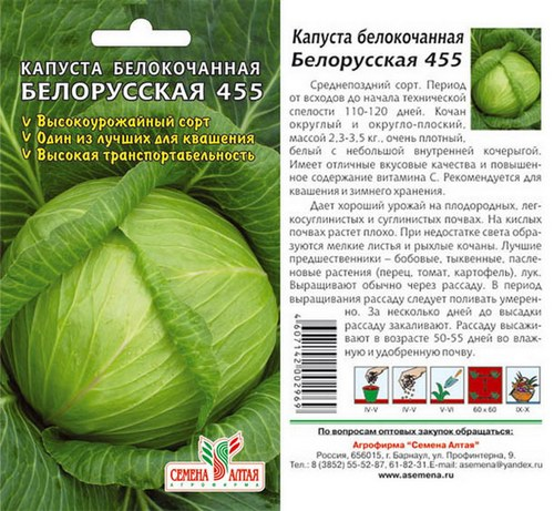 Капуста Белорусская описание