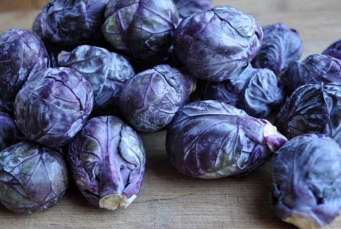 синяя брюсельская капуста