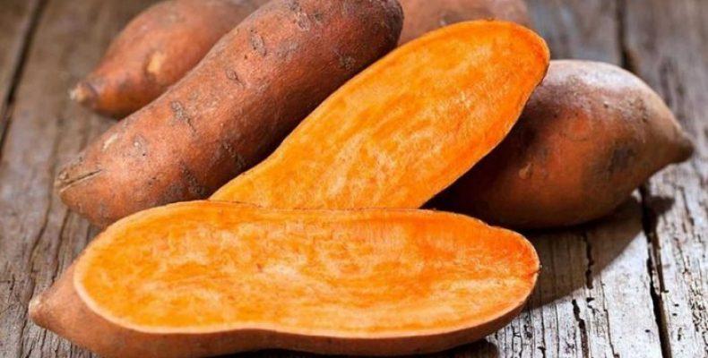 Батат – полезные свойства, противопоказания. Рецепты из «сладкого картофеля»