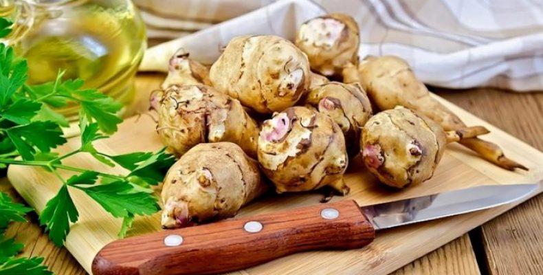 Польза топинамбура для организма. Лучшие рецепты блюд из топинамбура