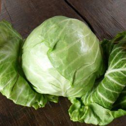 Как заготовить щеницу на зиму: лучшие рецепты заготовки от бабушки