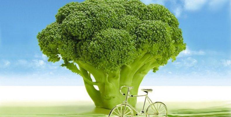 Как замораживать брокколи и сохранять всю пользу капусты?