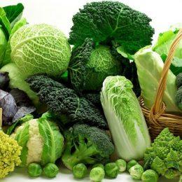 Разновидности капусты: рецепт приготовления салатной капусты